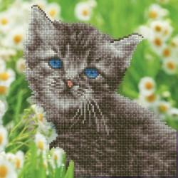 Kit Chaton Fleurs