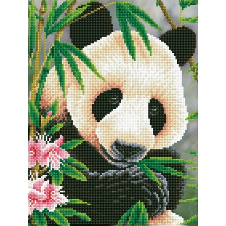 Kit Panda