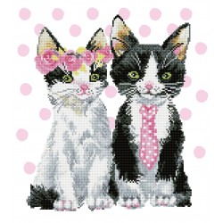Kit Mr et Mme Chat