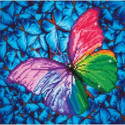 Kit Papillon