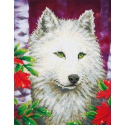 Kit Loup Blanc