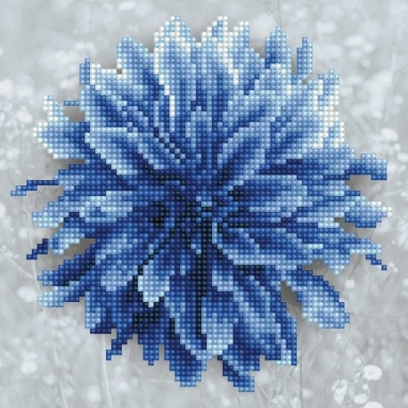 Kit Dahlia Bleu