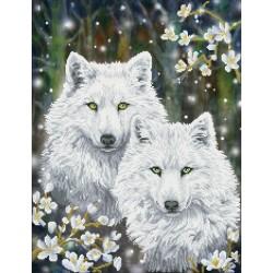 Kit Tendres Loups