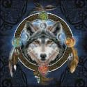 Kit Loup Celtic