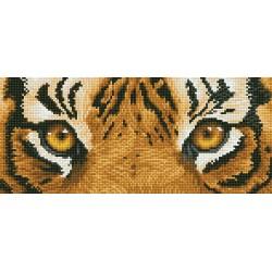 Kit Les Yeux du Tigre
